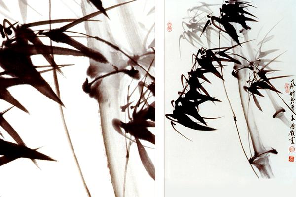 Bamboo in Wind