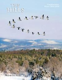 smaller hills.jpg