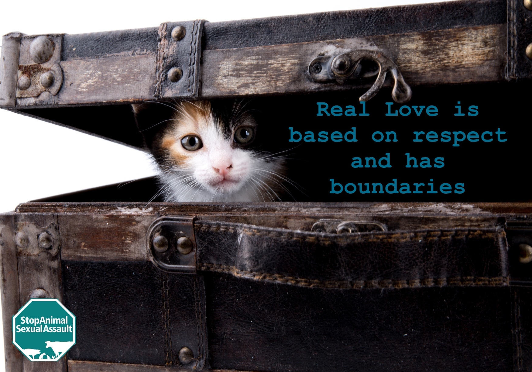 CAT- BOUNDARIES.jpg
