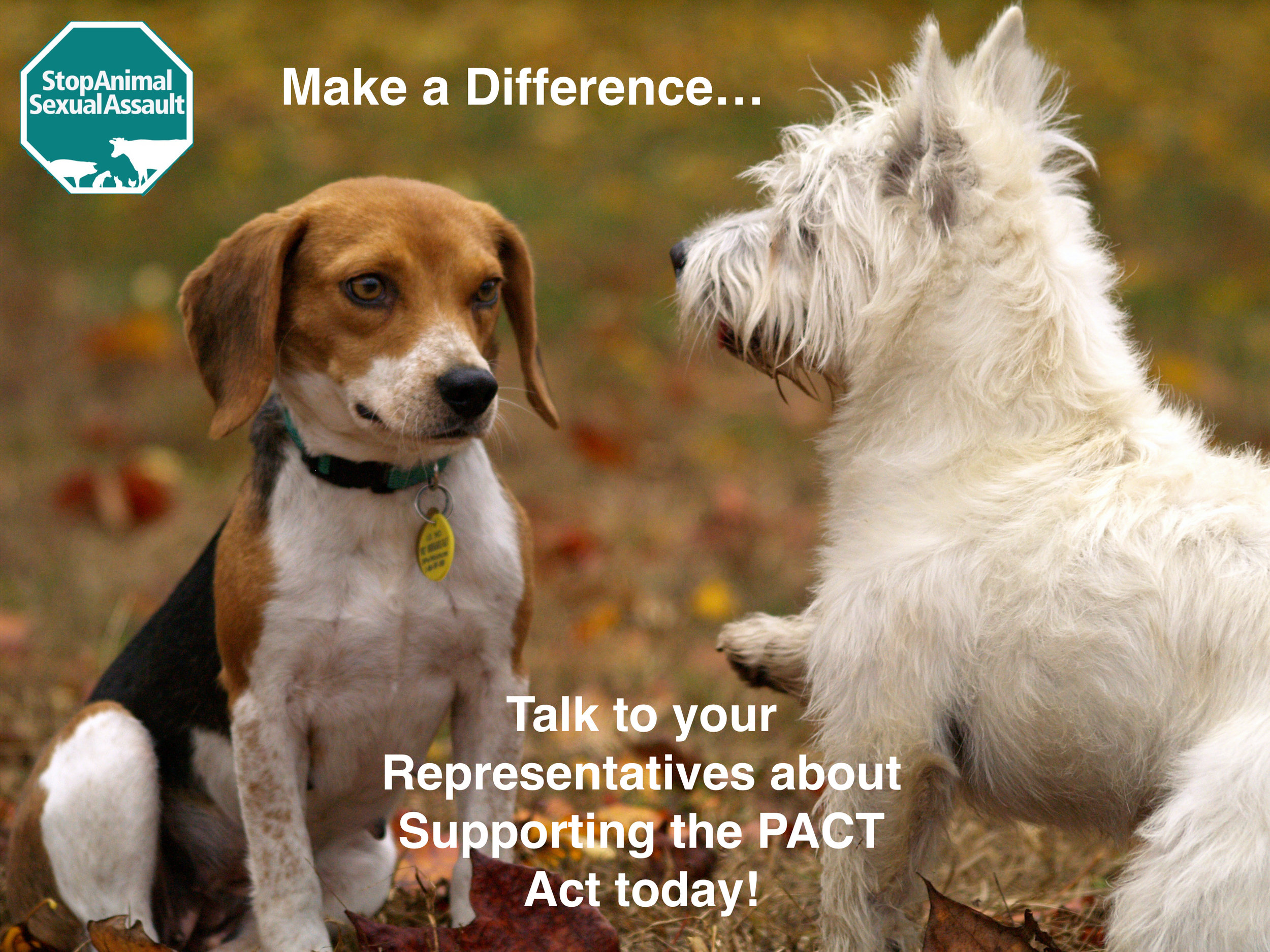 Talk to Rep Today abt PACT Act.jpeg