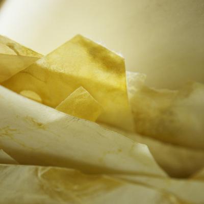parchment expertise - philippe hurel