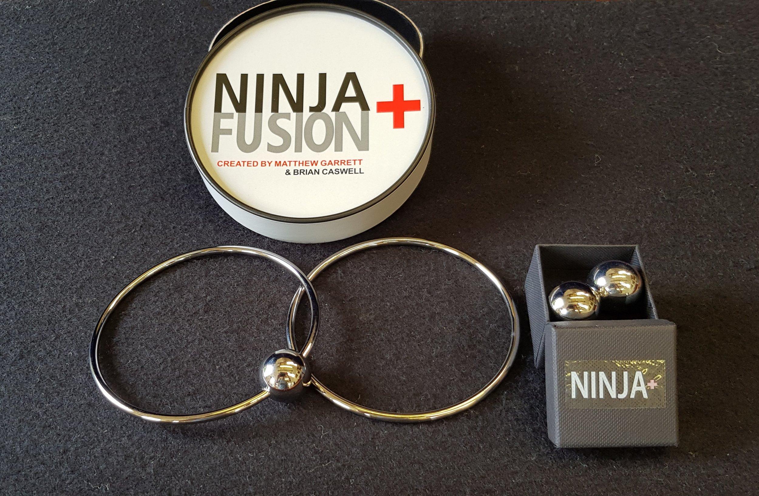 Ninja Fusion.jpg
