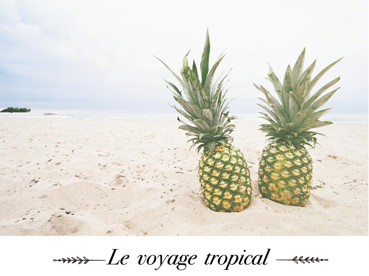 naturaderm-voyage-tropical.jpg