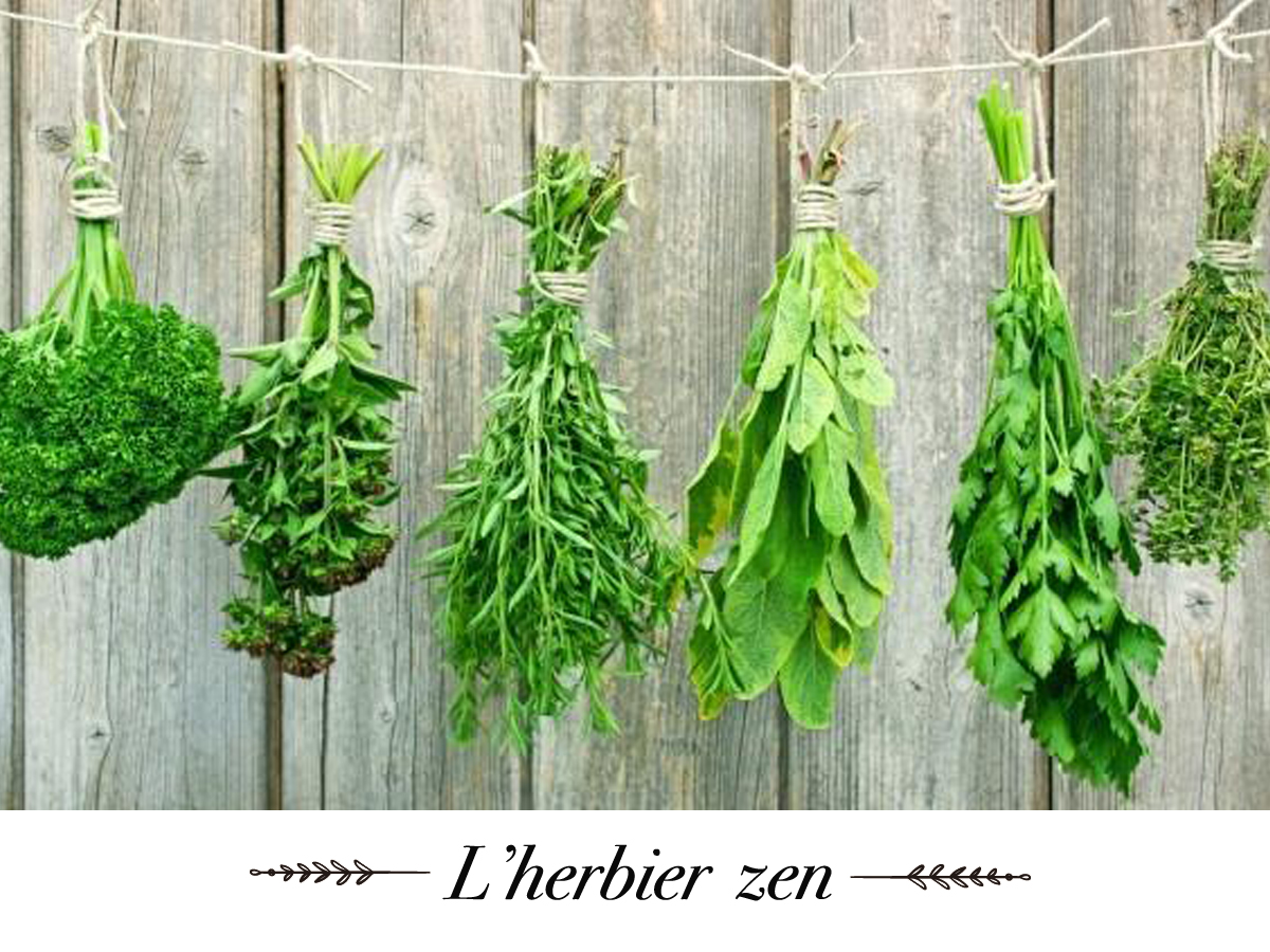 naturaderm-herbier-zen.jpg