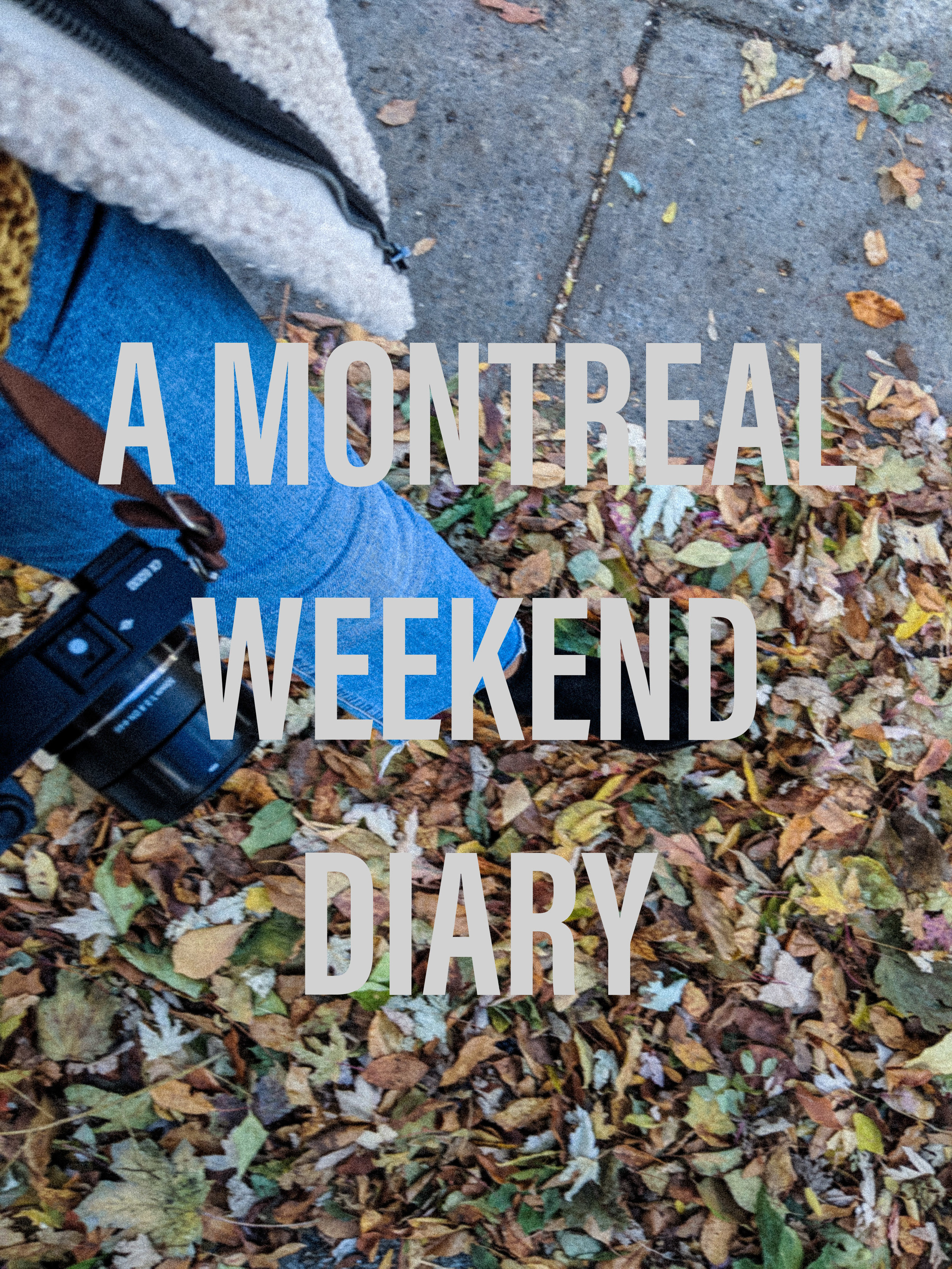 Montreal Travel Diary - Montreal City Guide - Travel Blogger