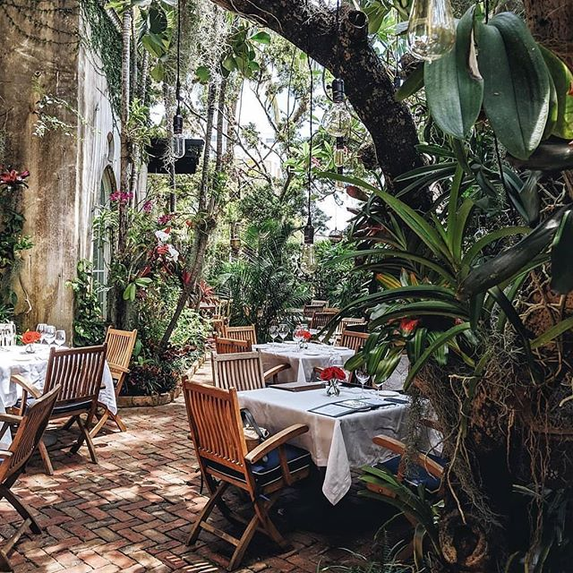 I've never met a jungle restaurant patio I didnt like, this one by @andreaannu is no exception 🌿✨ #magicplacestoeat