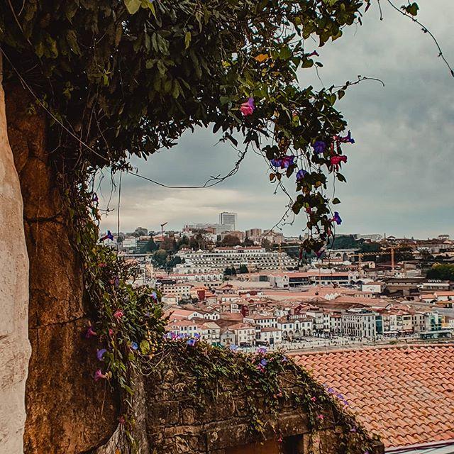 Pockets of Porto ✨