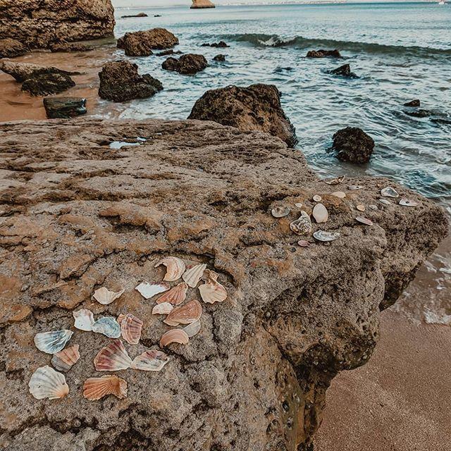 When you find sea shell art on a hidden beach in the Algarve, that's magic✨ #magicfoundhere #magicplacestogo