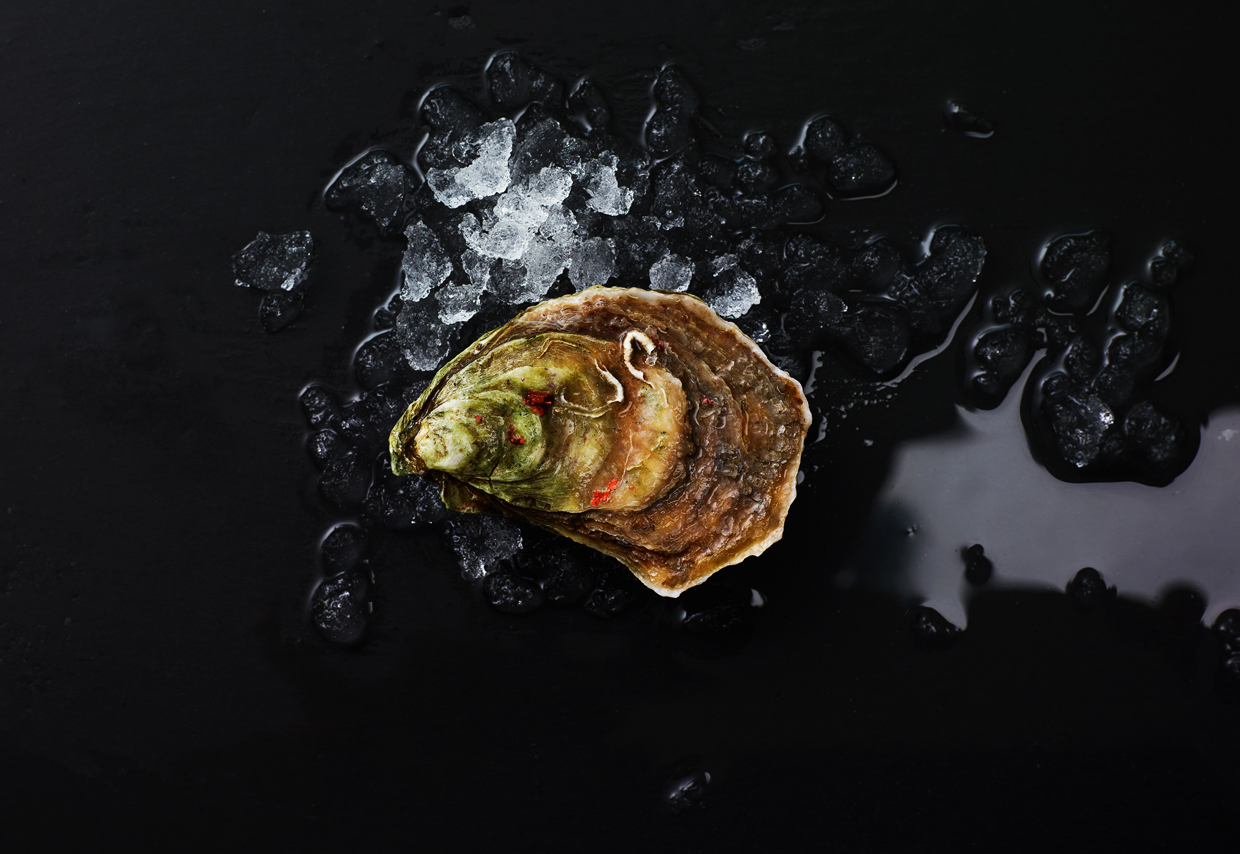 Oyster-Party_0083.jpg