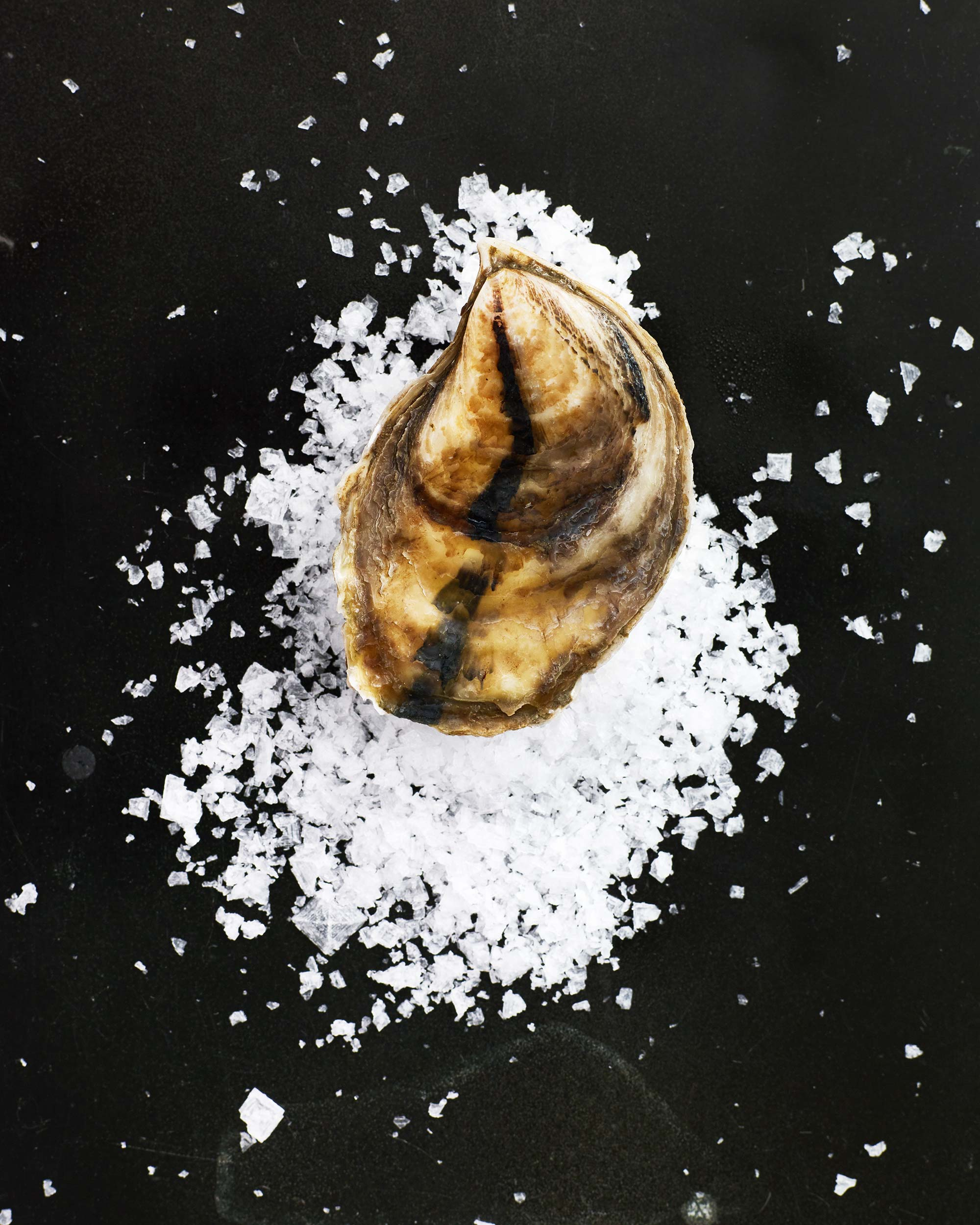Oyster-Party_0157.jpg