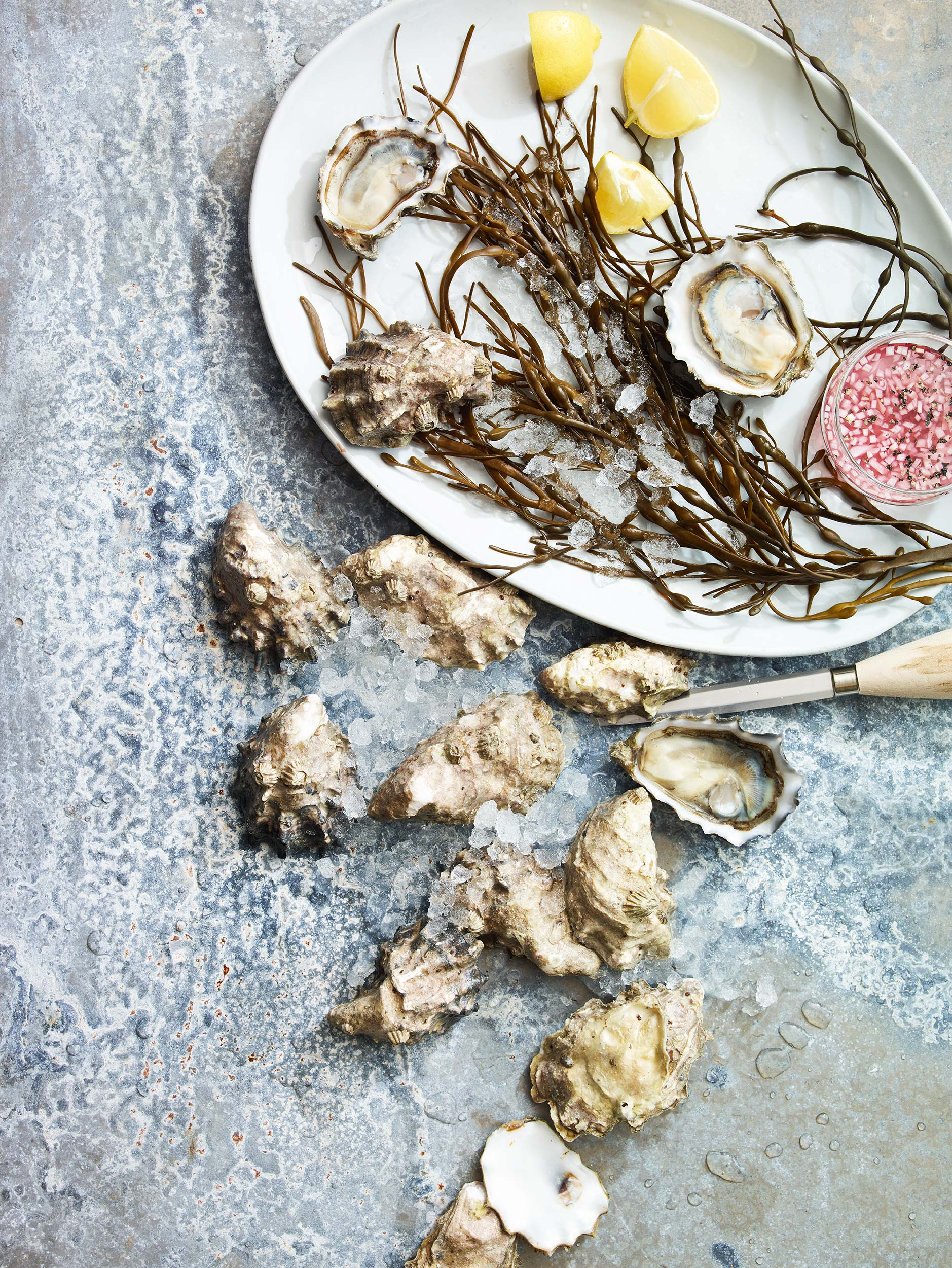 Oyster-Party_0273.jpg