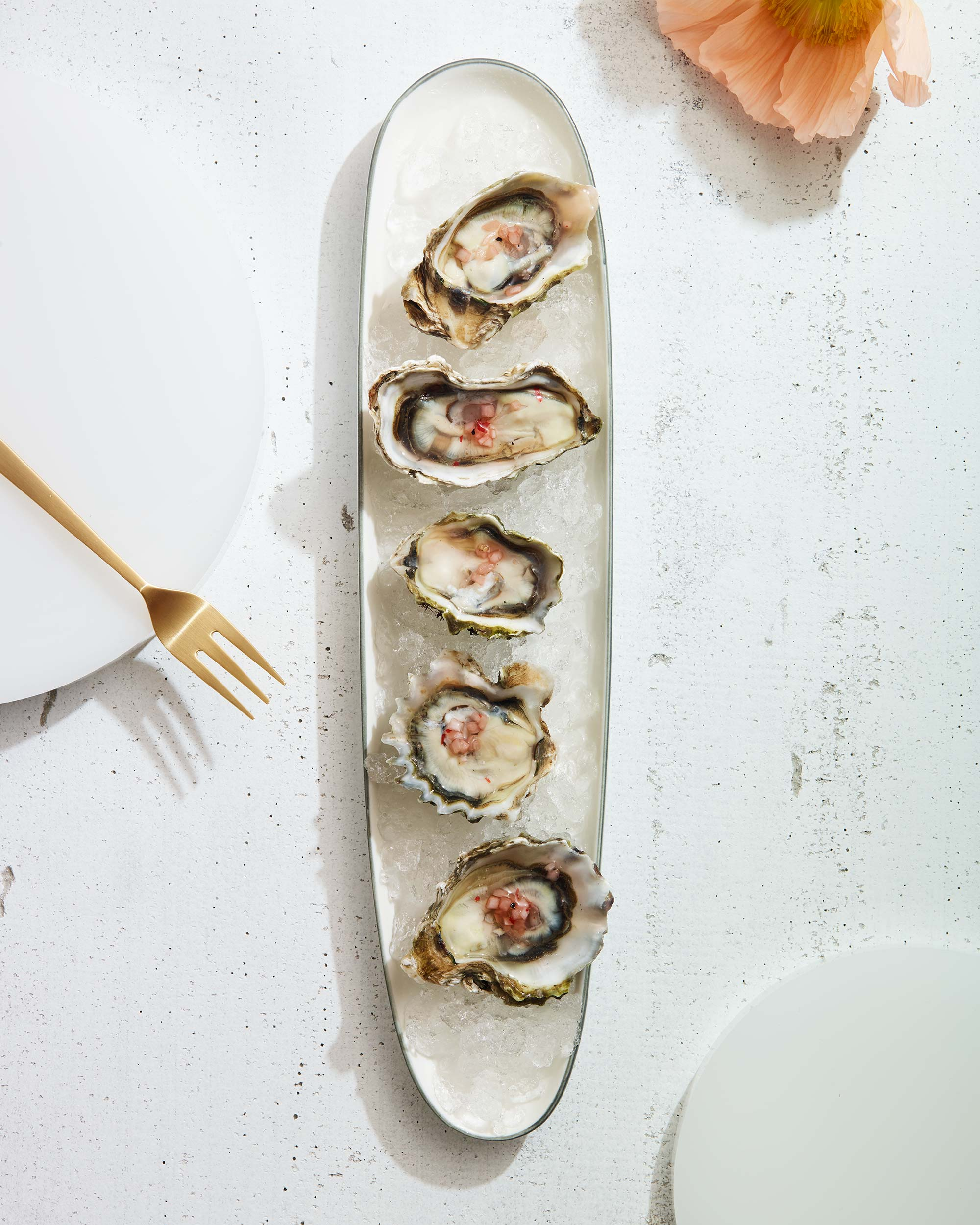 Oyster-Party_0599.jpg