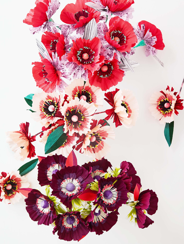 Paper-Flowers-09-17_0016.jpg