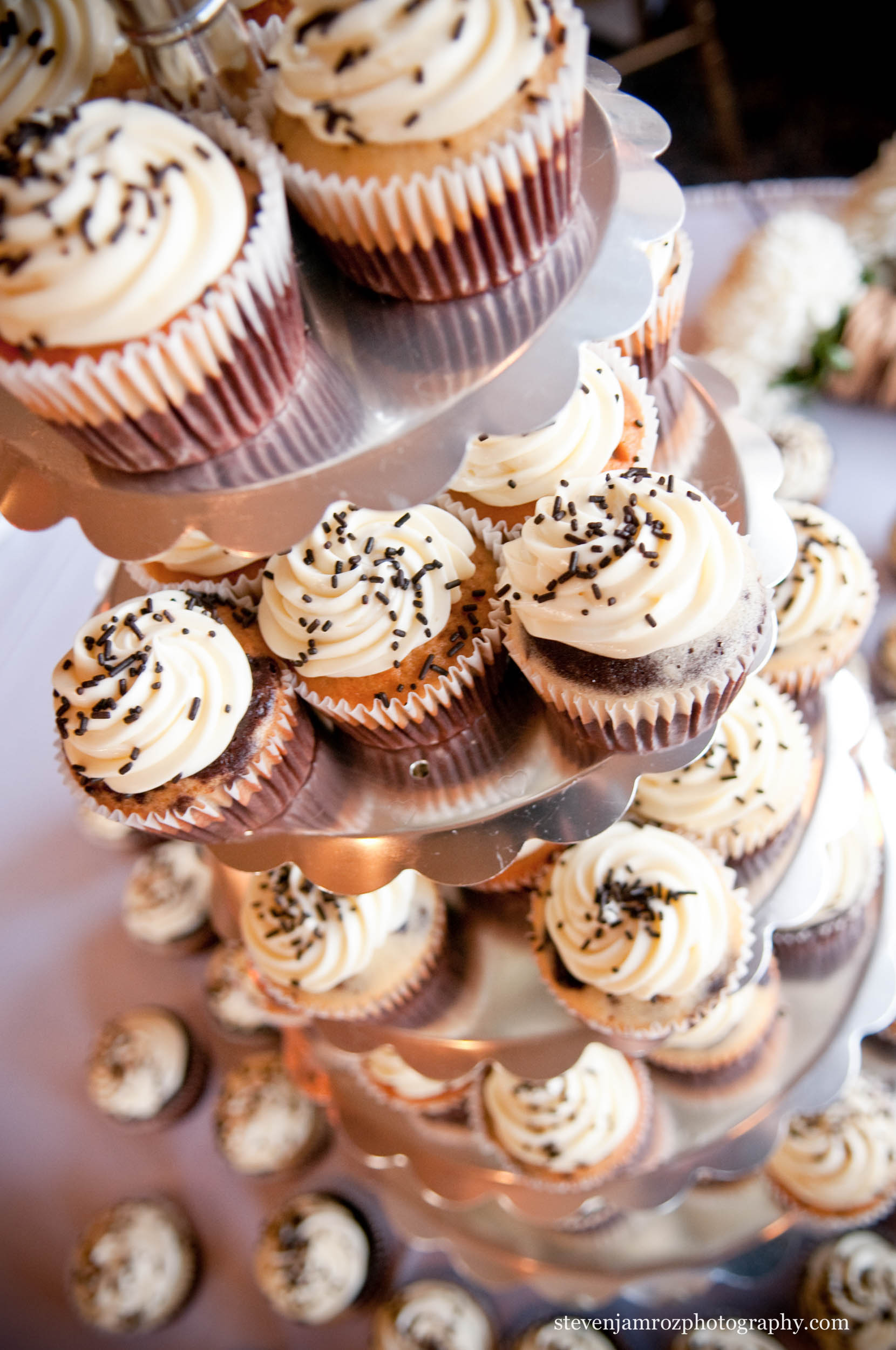chocolate-cupcakes-wedding-raleigh-steven-jamroz-photography-0263.jpg