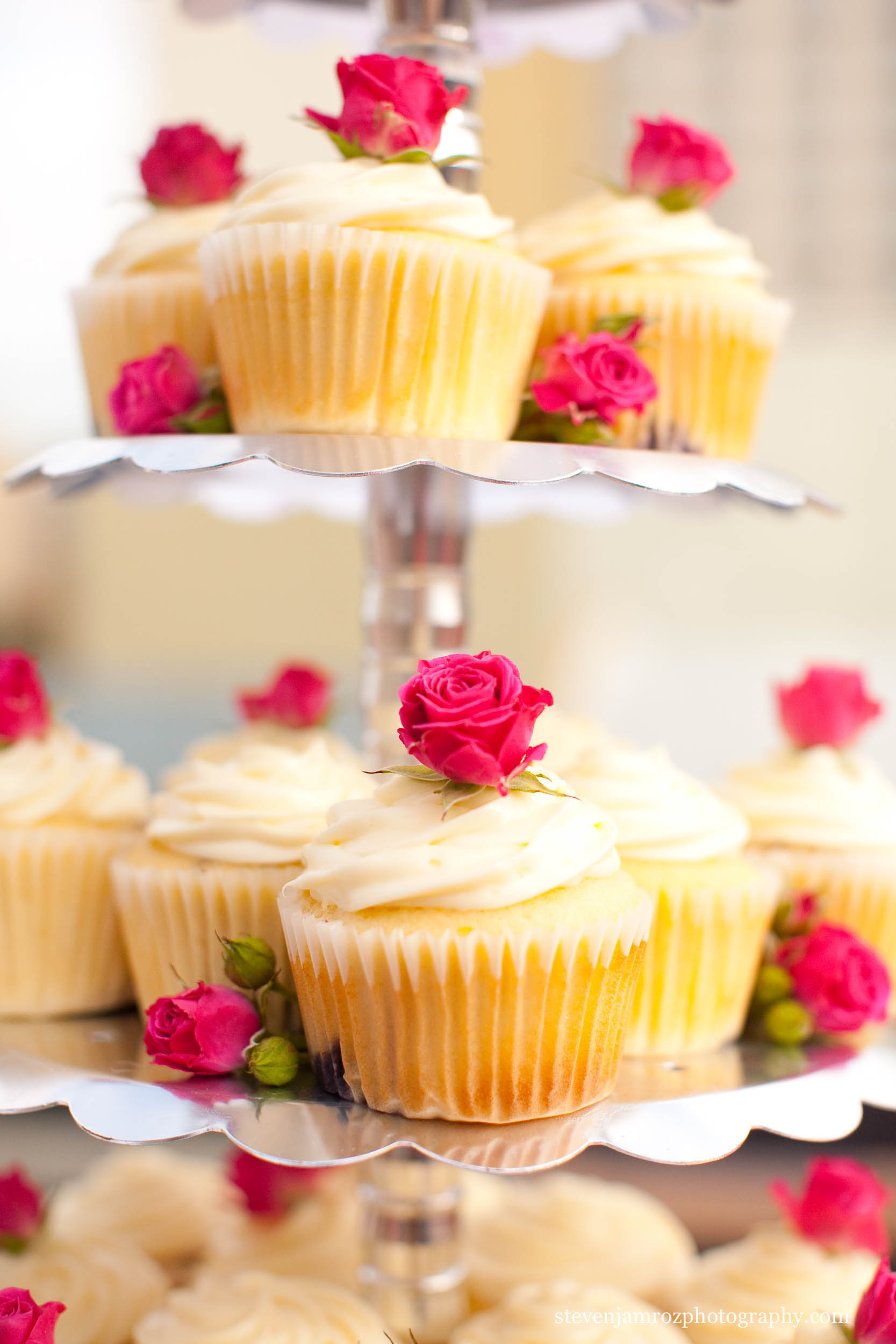 cupcakes-and-cake-wedding-raleigh-photography-0926.jpg
