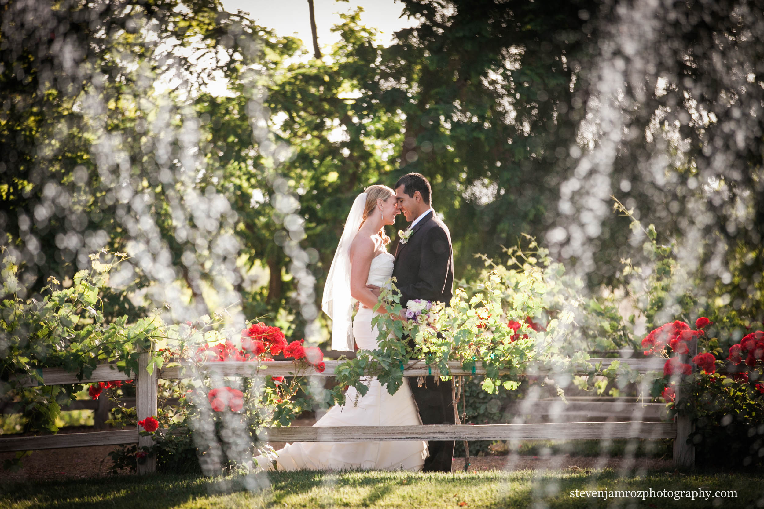 fountain-outdoors-raleigh-wedding-steven-jamroz-photography-0235.jpg