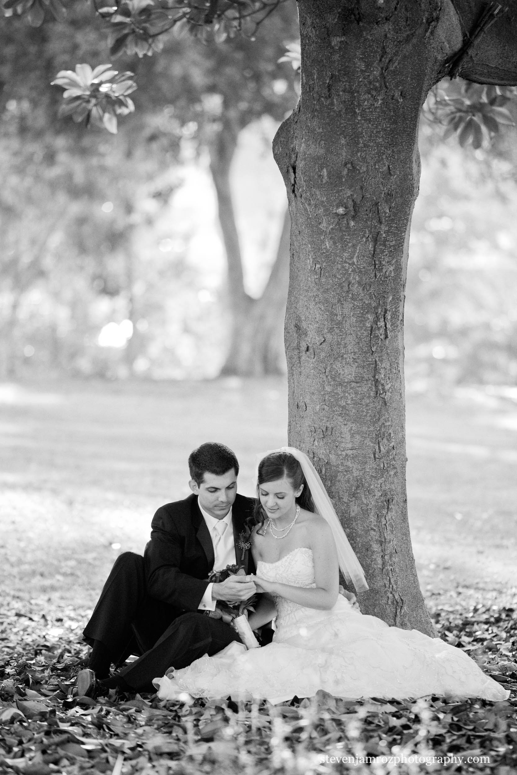tree-bride-groom-sitting-raleigh-wedding-0807.jpg