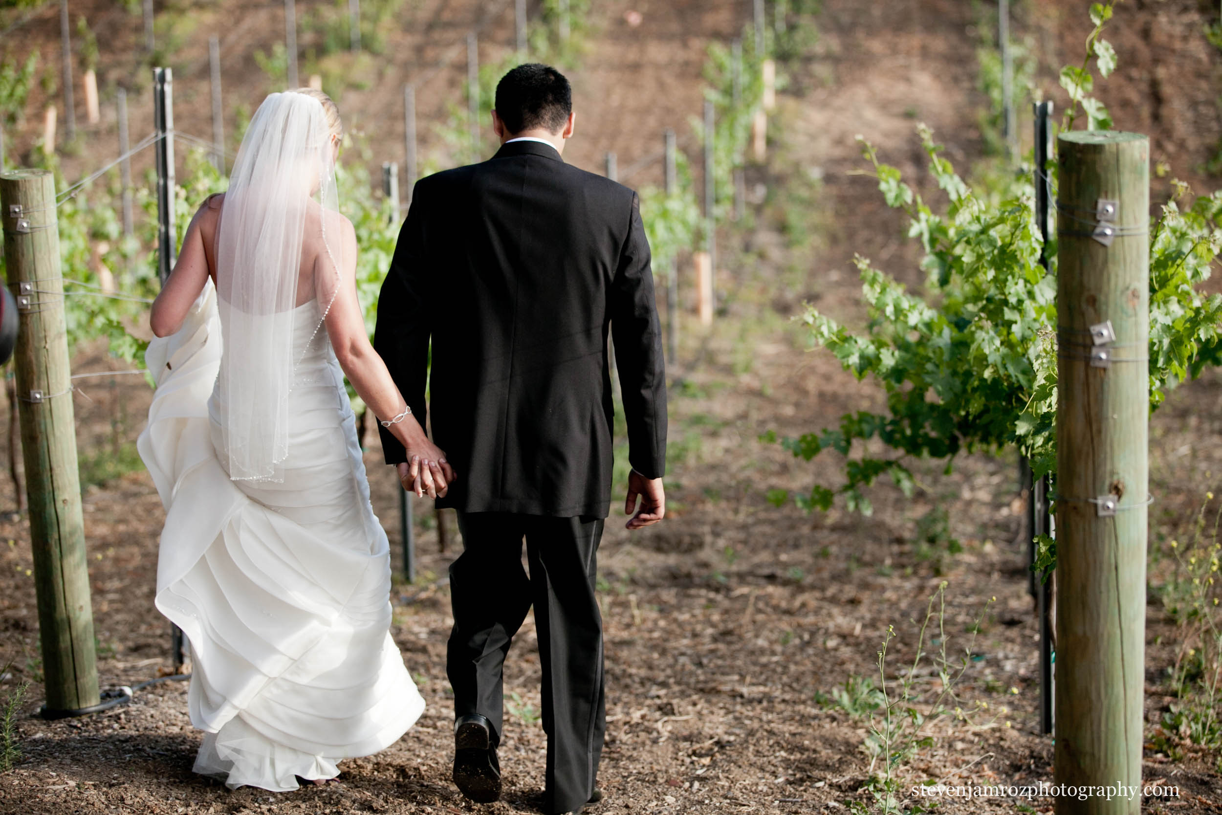 vineyard-bride-groom-walking-wedding-steven-jamroz-photography-0486.jpg