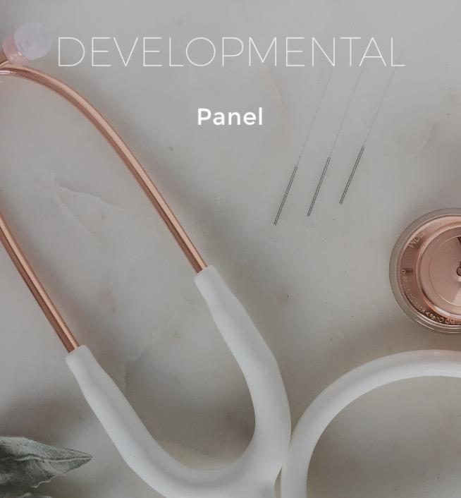 developmental panel.jpg