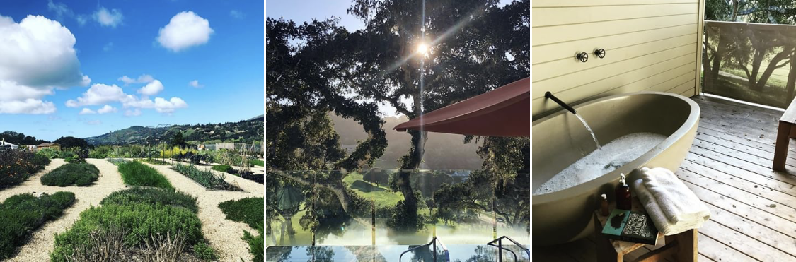 image from  carmel valley ranch instagram