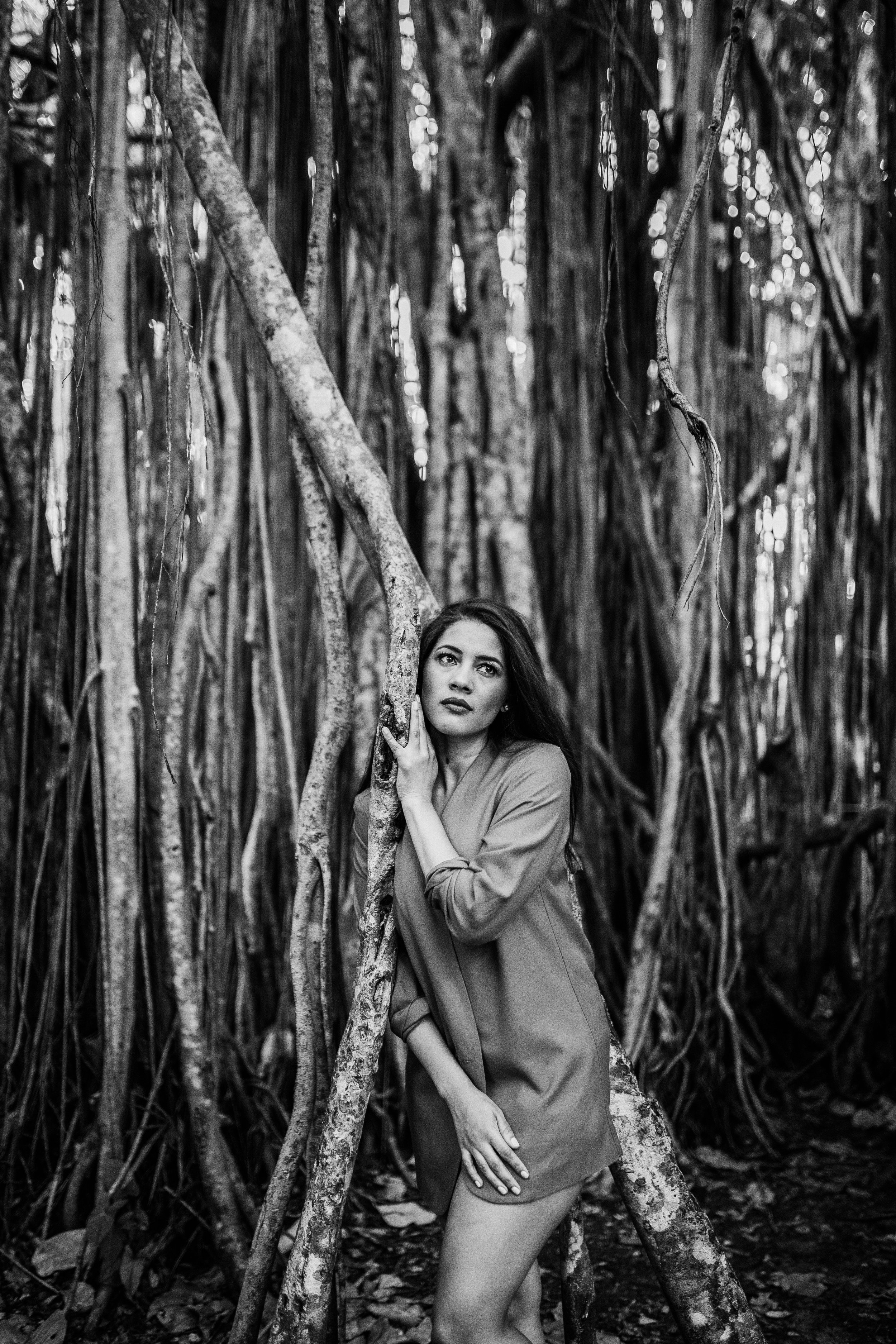 Tree Tops Park, Davie FL