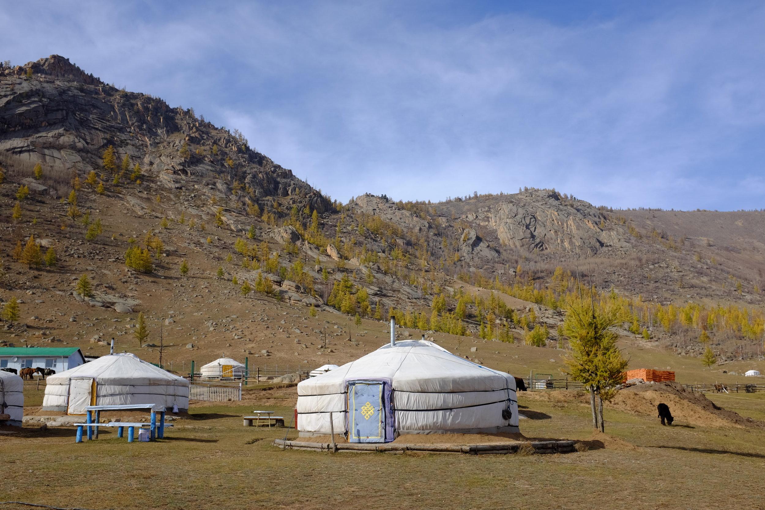 Top photo Mongolia.JPG