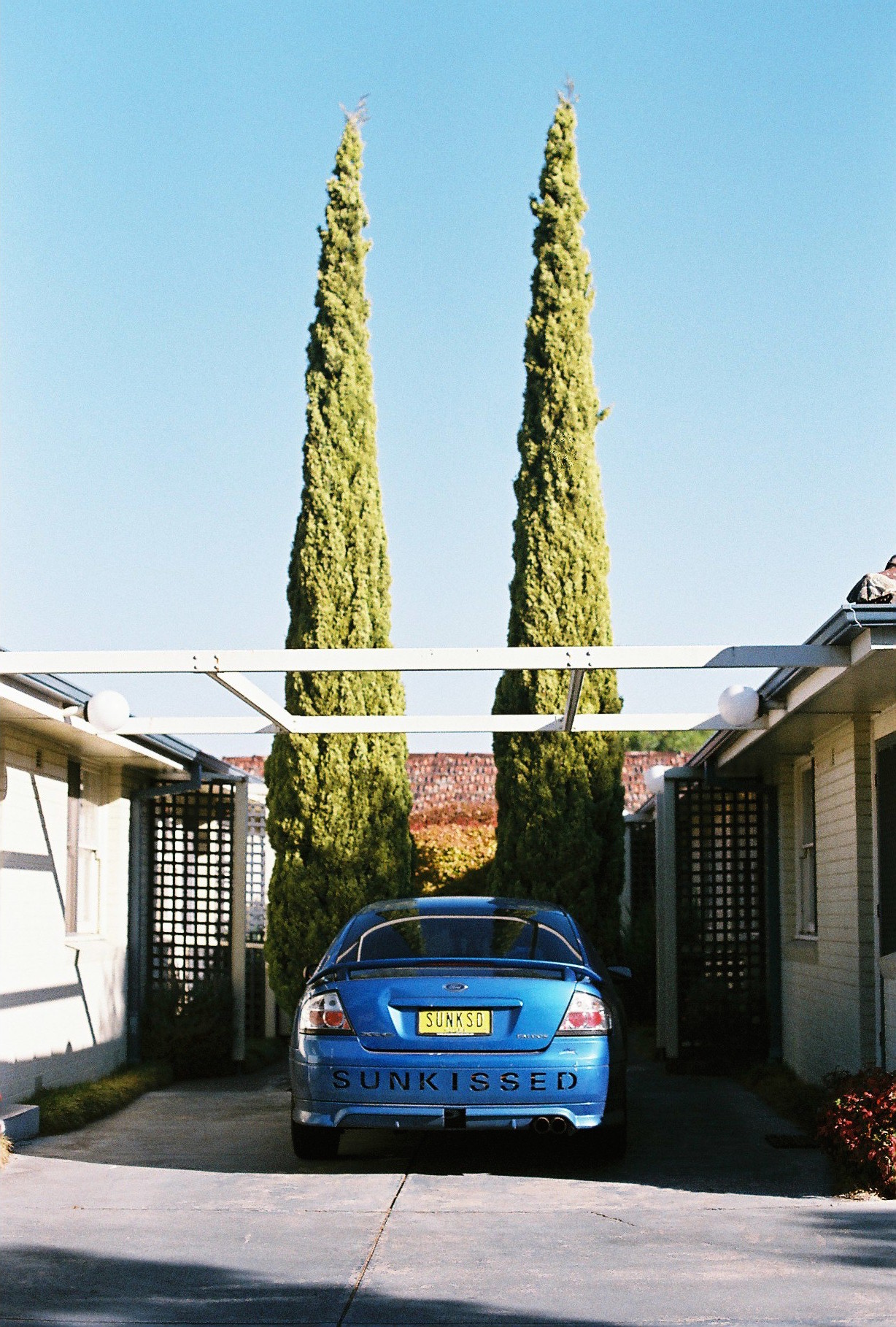 photography suburb melbourne car trees