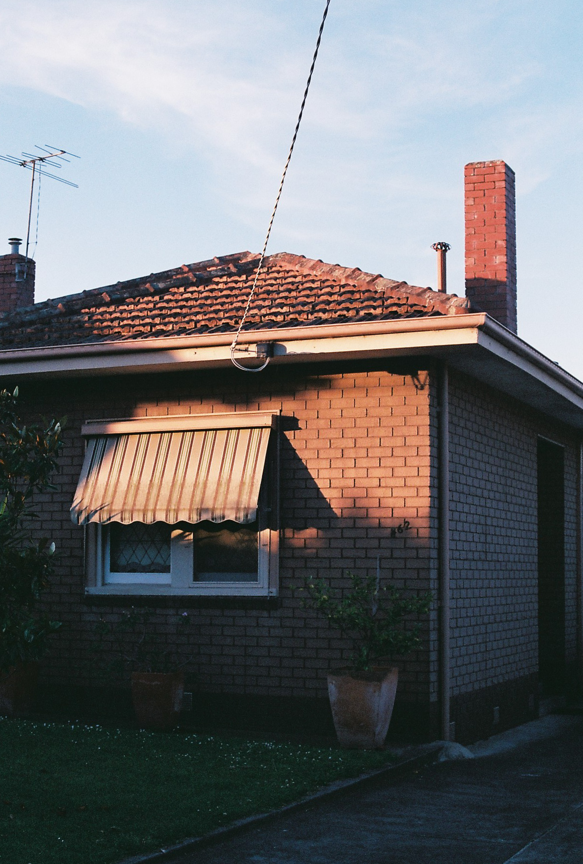 photography suburb melbourne sunset golden hour coburg house garden