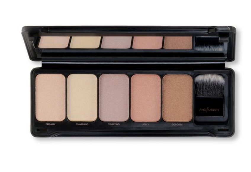 Profusion Highlight   Pro Makeup Case
