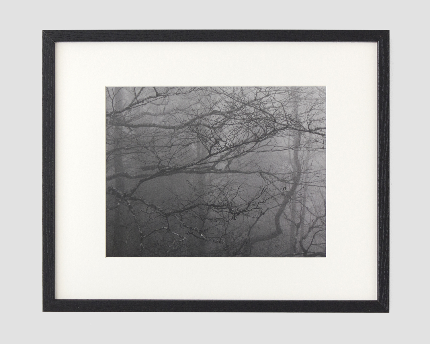 gelatin silver print  image size 11 x 14 in.  frame size 16 x 20 in.