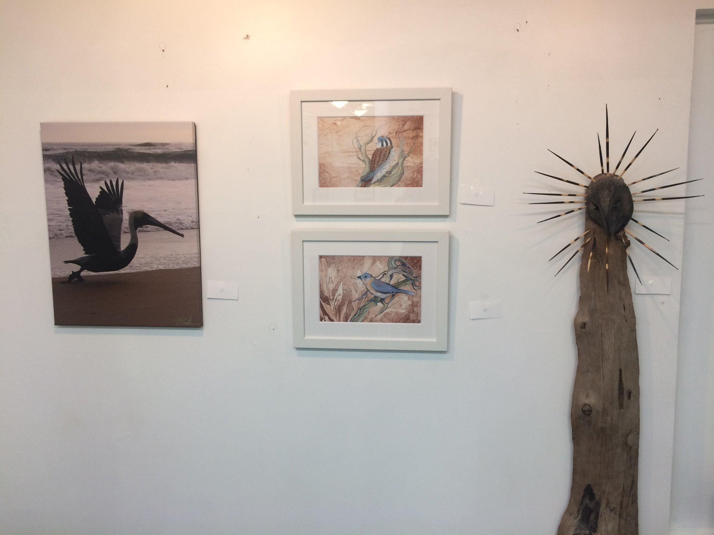 Gallery 4  - 13 (1).jpg