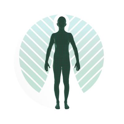 Whole Body.jpg