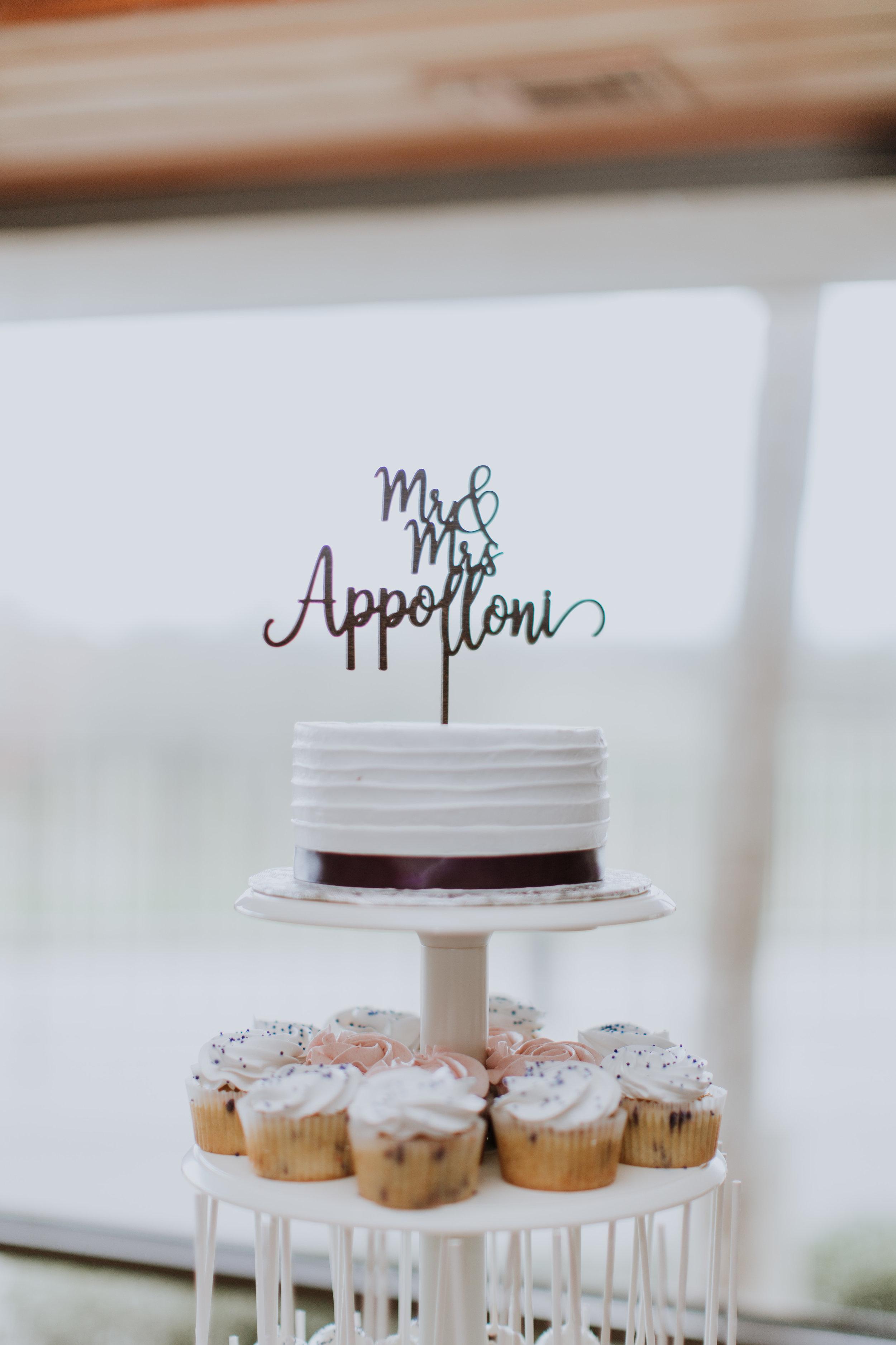 appolloni_new smyrna_wedding-498.jpg