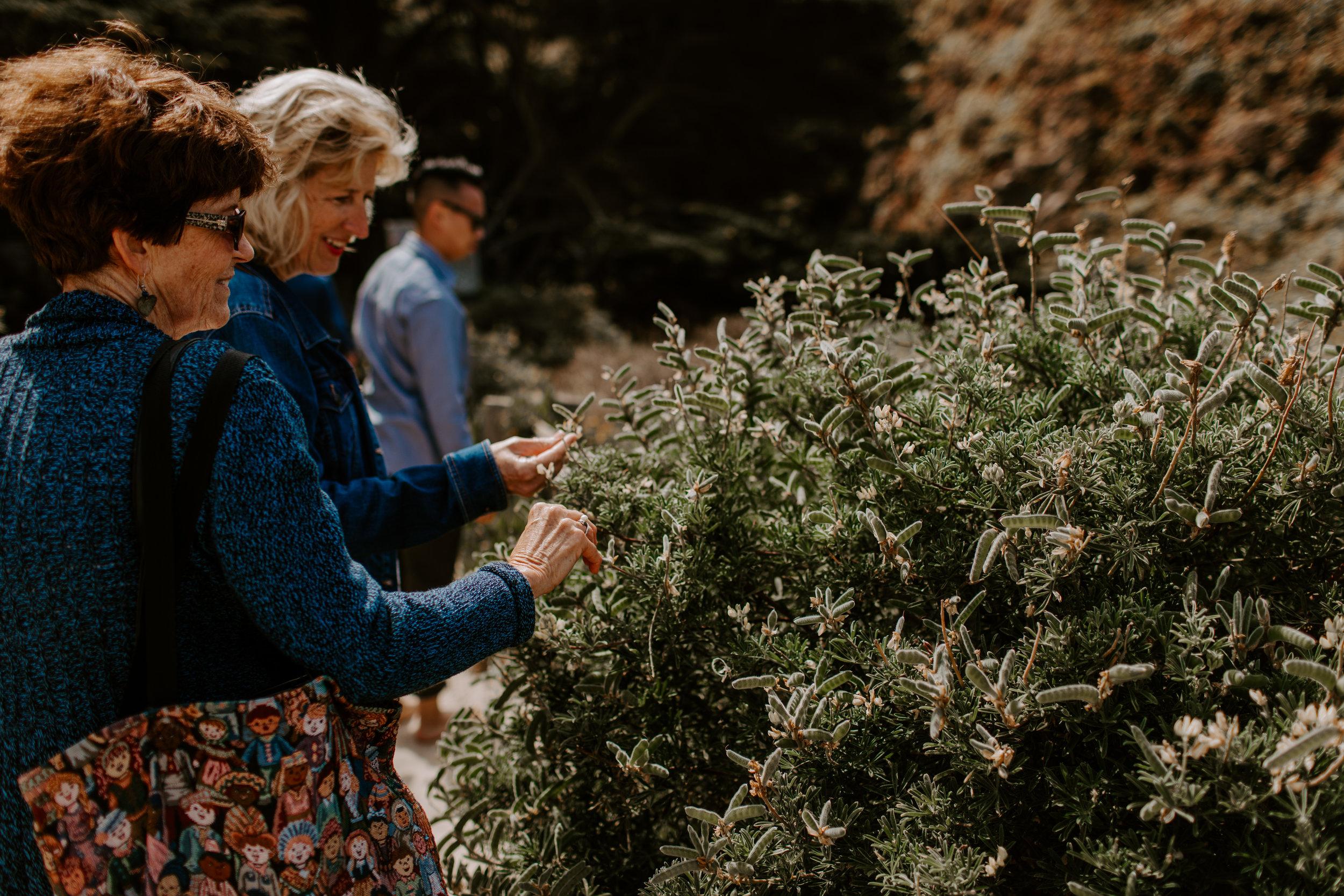 big sur california intimate wedding pheiffer beach photographer (28 of 40).jpg