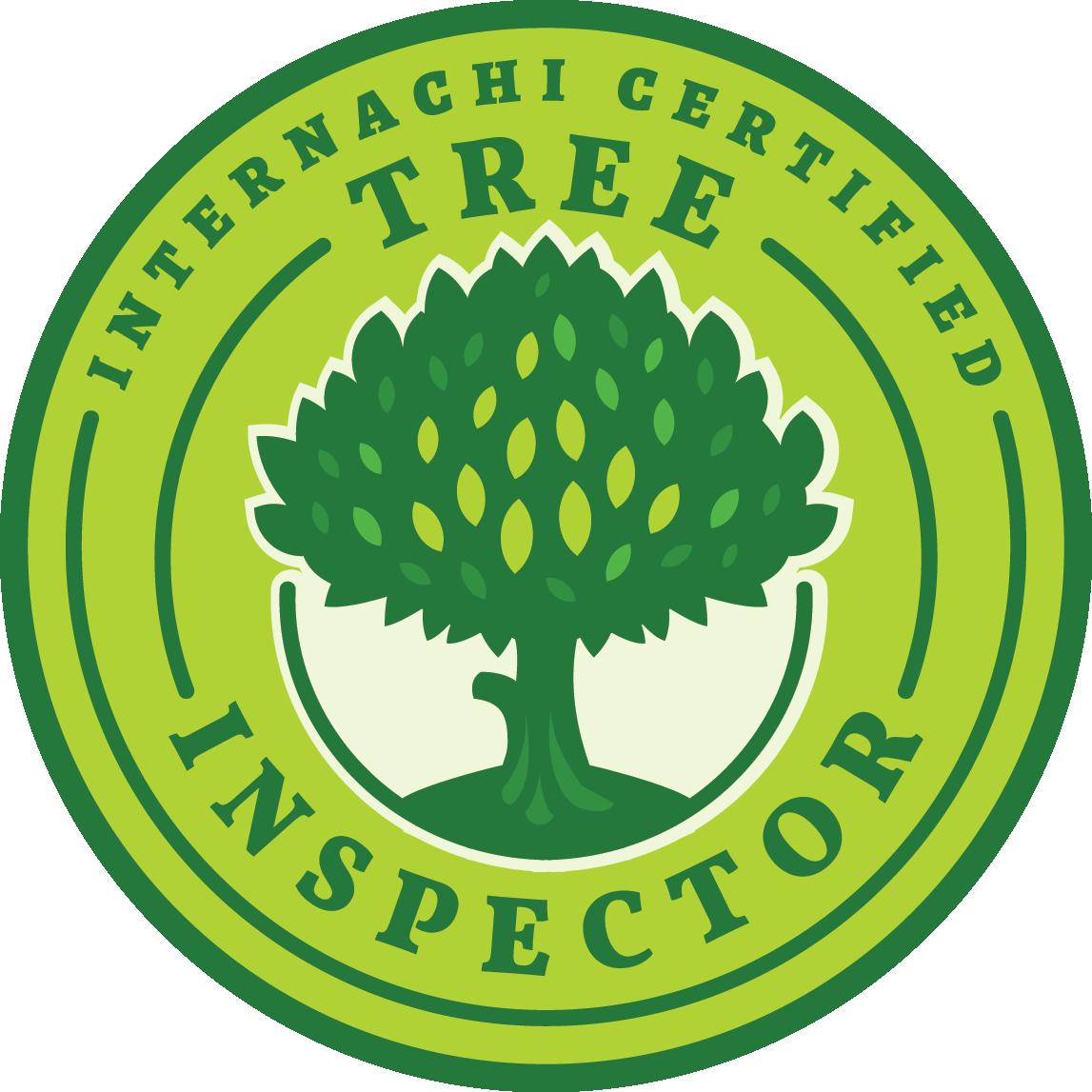 Best Home Inspectors El Mirage