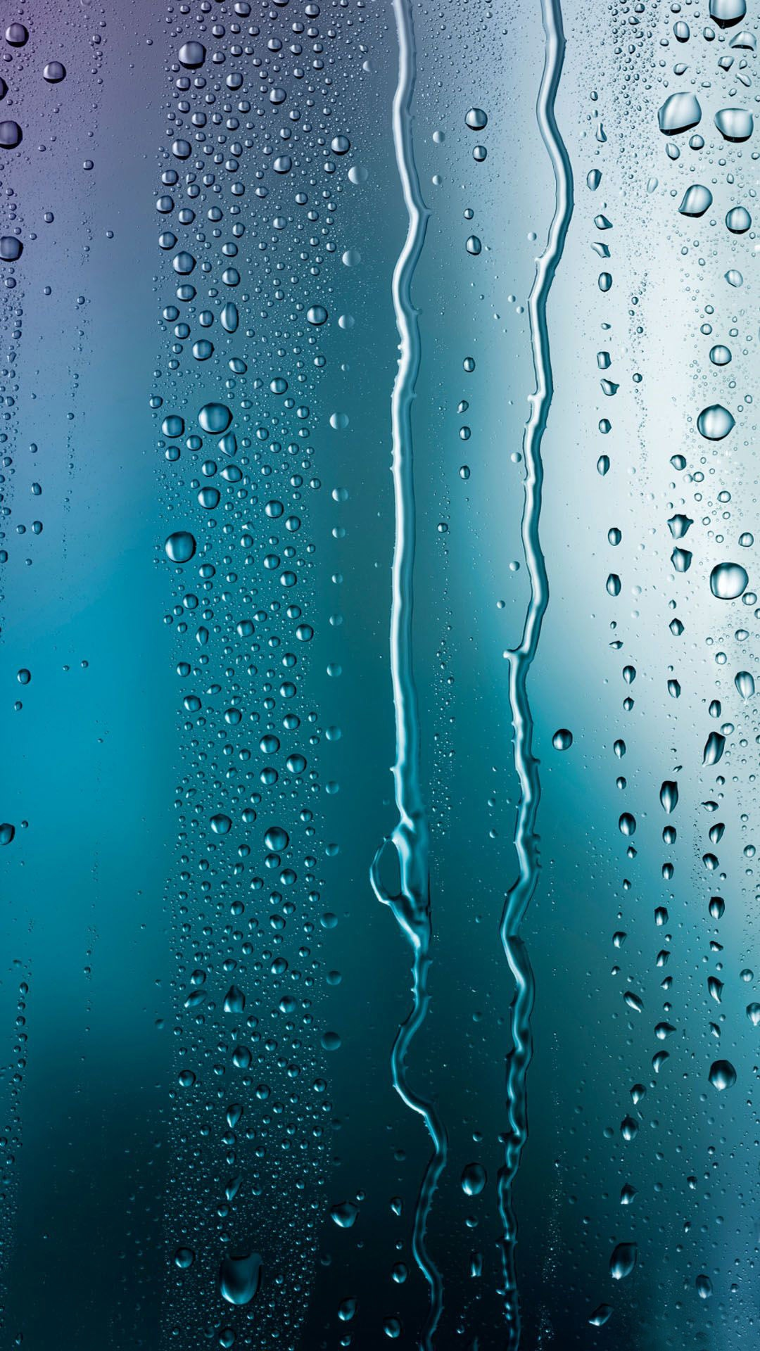 Improper or missing ventilation at bathrooms, kitchens and laundry rooms, can add gallons of moisture into your homes atmosphere and create conditions conducive to mold growth.