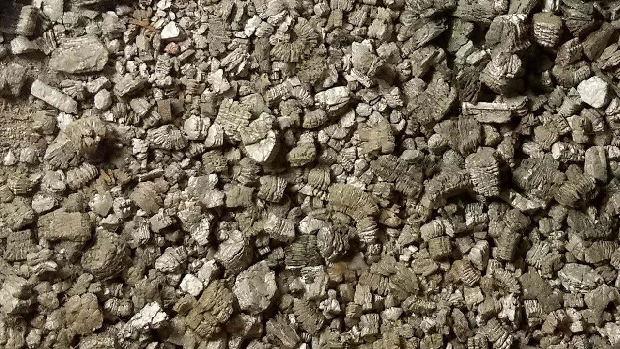 Do you have an older home with attic insulation that looks like this? This is Vermiculite, it has a high likelihood of containing asbestos.