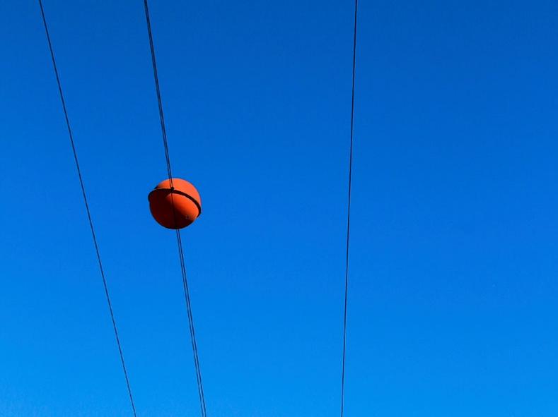 If you live near powerlines, you've probably seen these orange/red balls. They are aerial markers for planes and weigh as much as a bowling ball. BTW, testing for electromagnetic waves is beyond the scope of a typical home inspection.