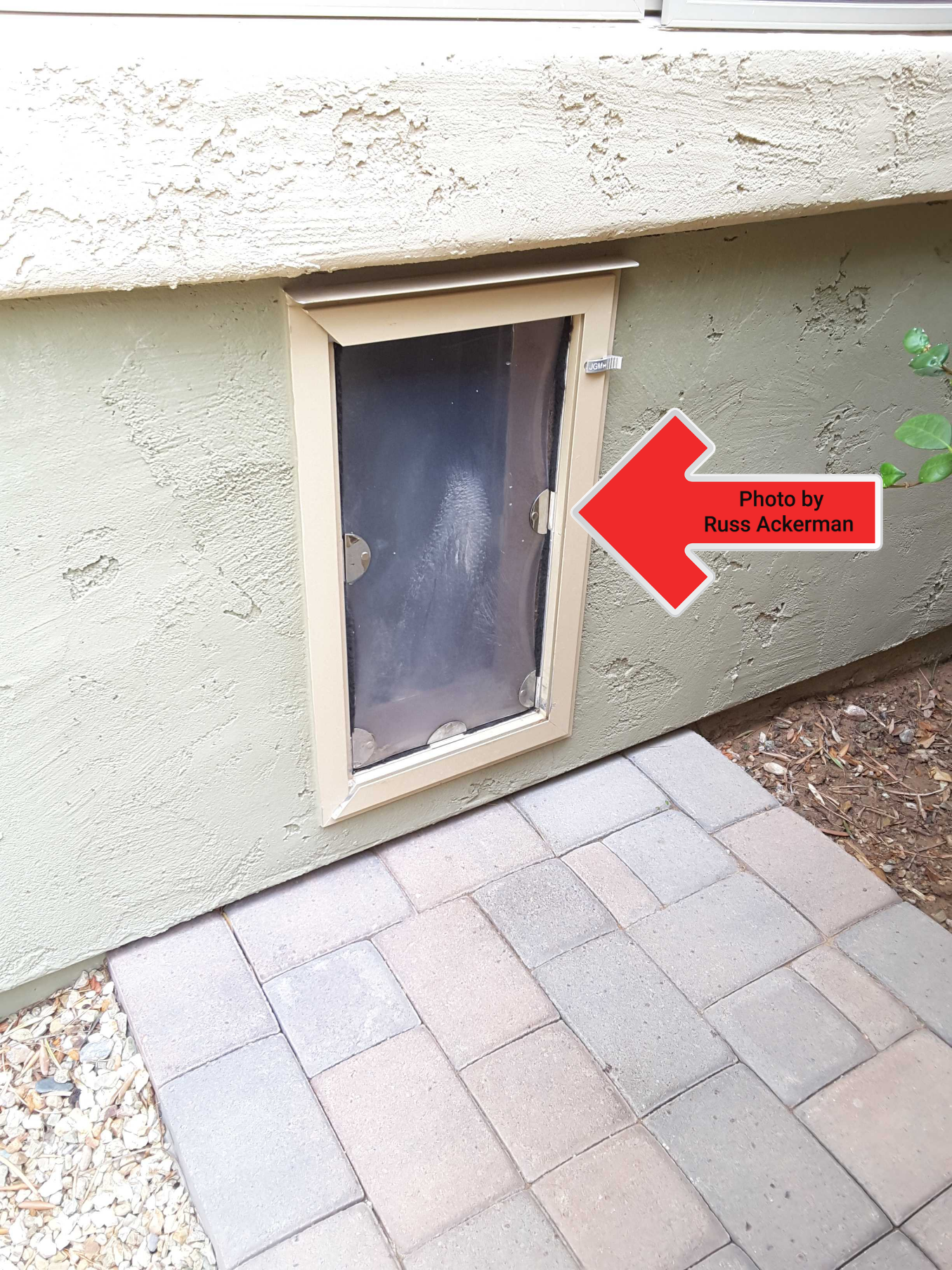 A pet door leading to a pool area is a safety hazard. This is also a potential security issue as thieves often break into homes using a pet door.
