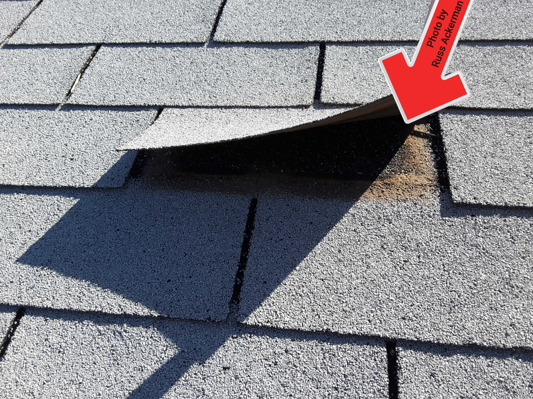 This older asphalt roof has failed bonding throughout the entire roof, bring in a big wind storm and you will start losing tabs and shingles.