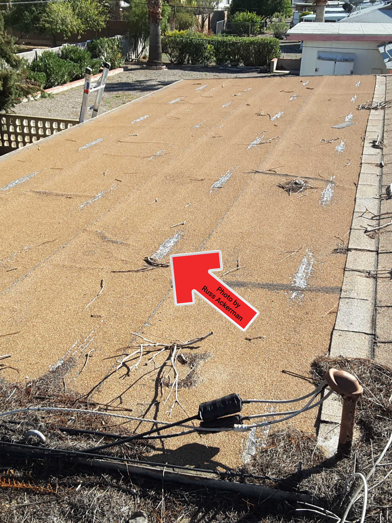 This roof has seen its last days and is in need of replacement before a leak develops.