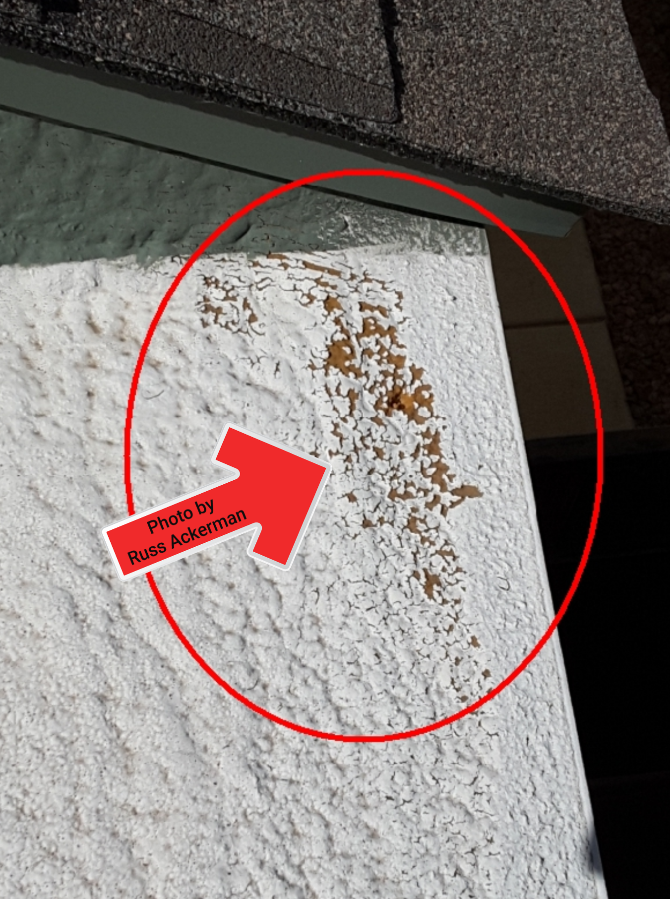 Exposed foam on roof surfaces are susceptible to UV damage, another coat of elastomeric paint will keep it protected.