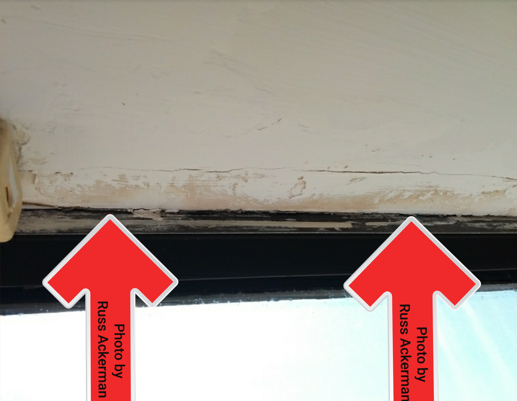 Stachybotrys or Black Mold was found inside the drywall of this leaking window. All leaks need repair and all mold needs remediation.