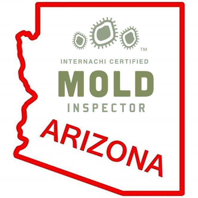 Mold in Arizona