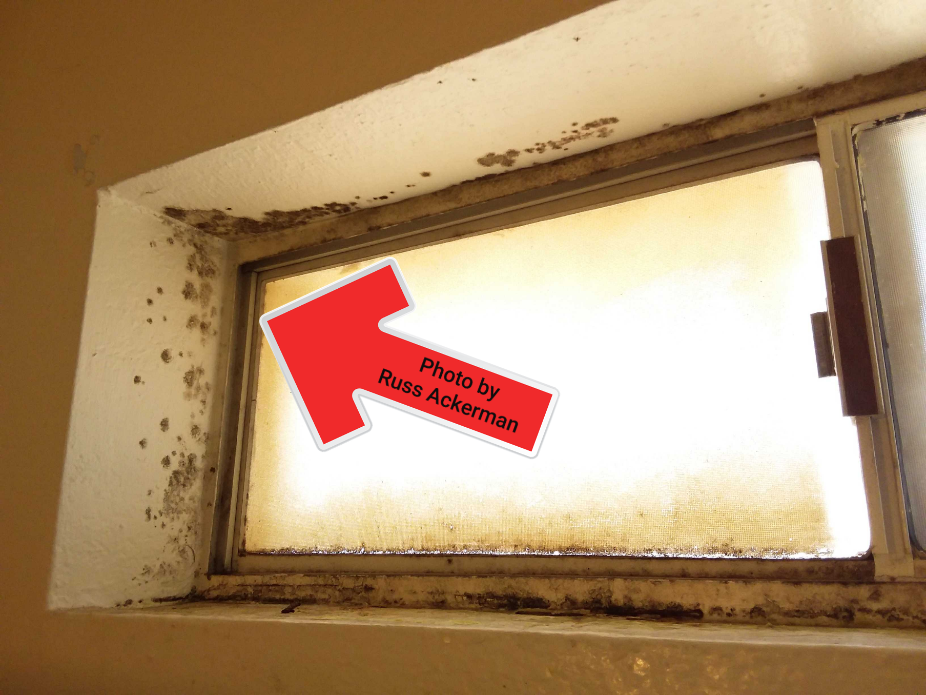 When a bathroom has no exhaust fan, the window should be open during showers. Now mold remediation is required.