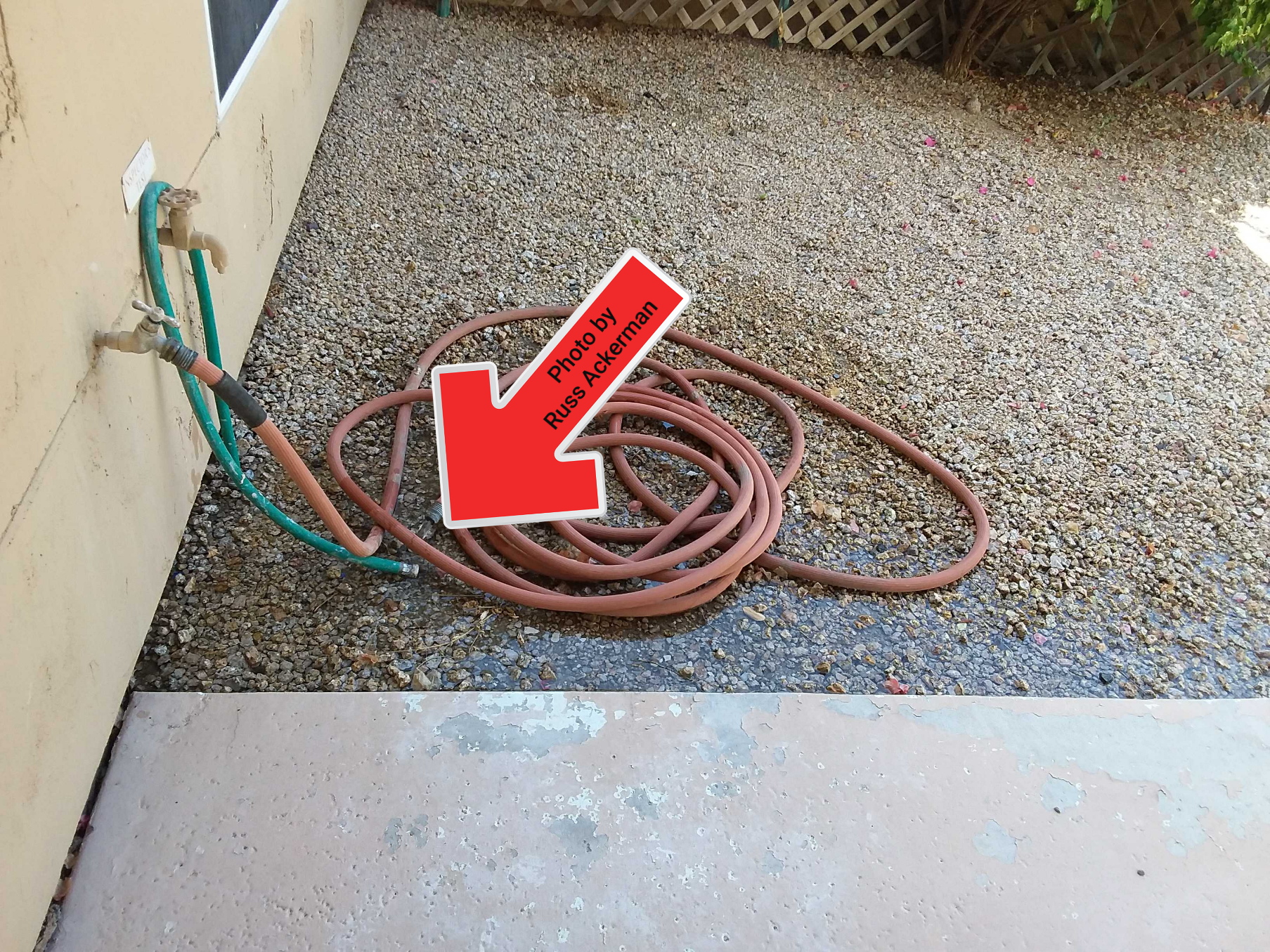 I left this garden hose on for a few minutes to show how the grading could be improved to keep water from pooling near the foundation and patio.
