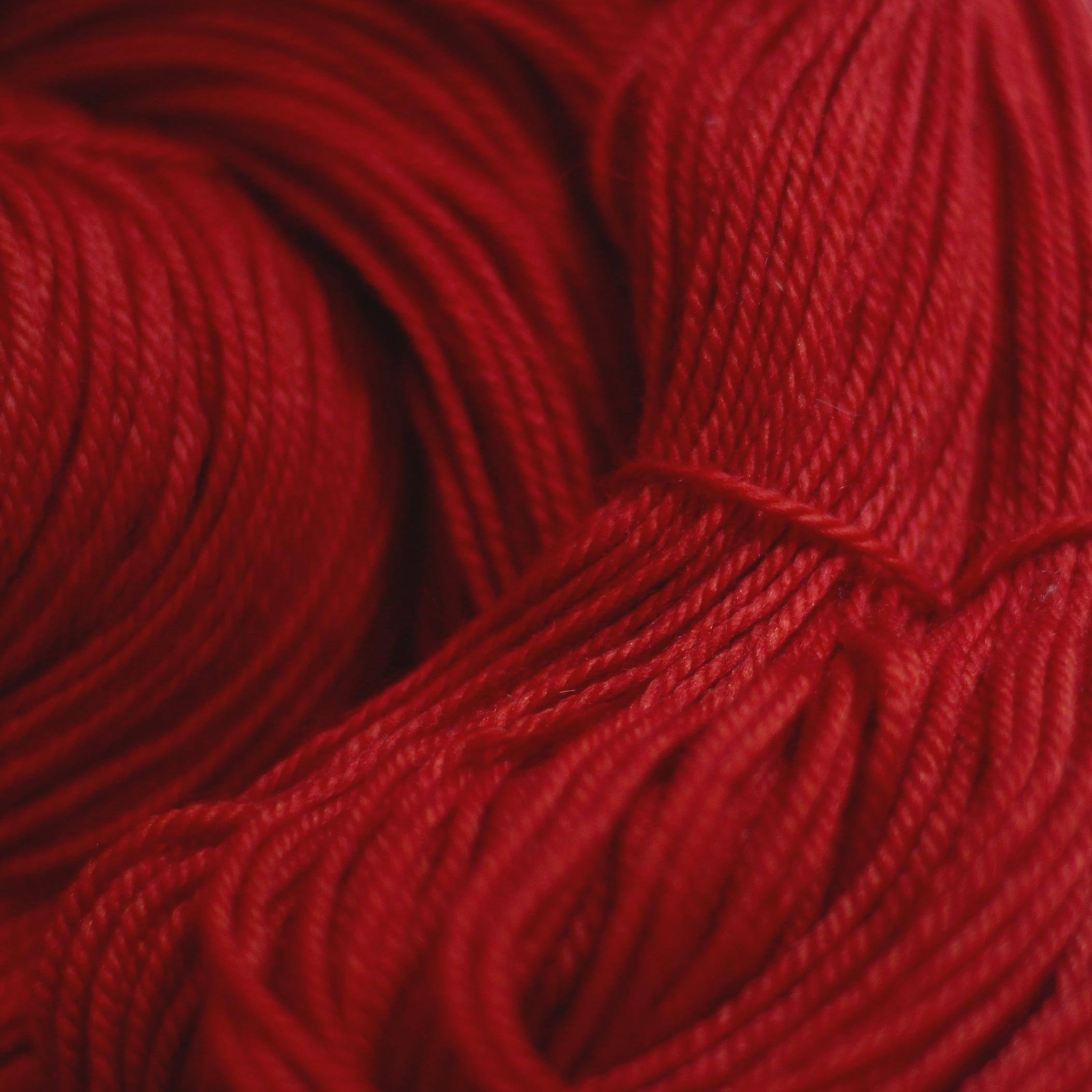 DYER'S RED     Madder   Rubia tinctorum