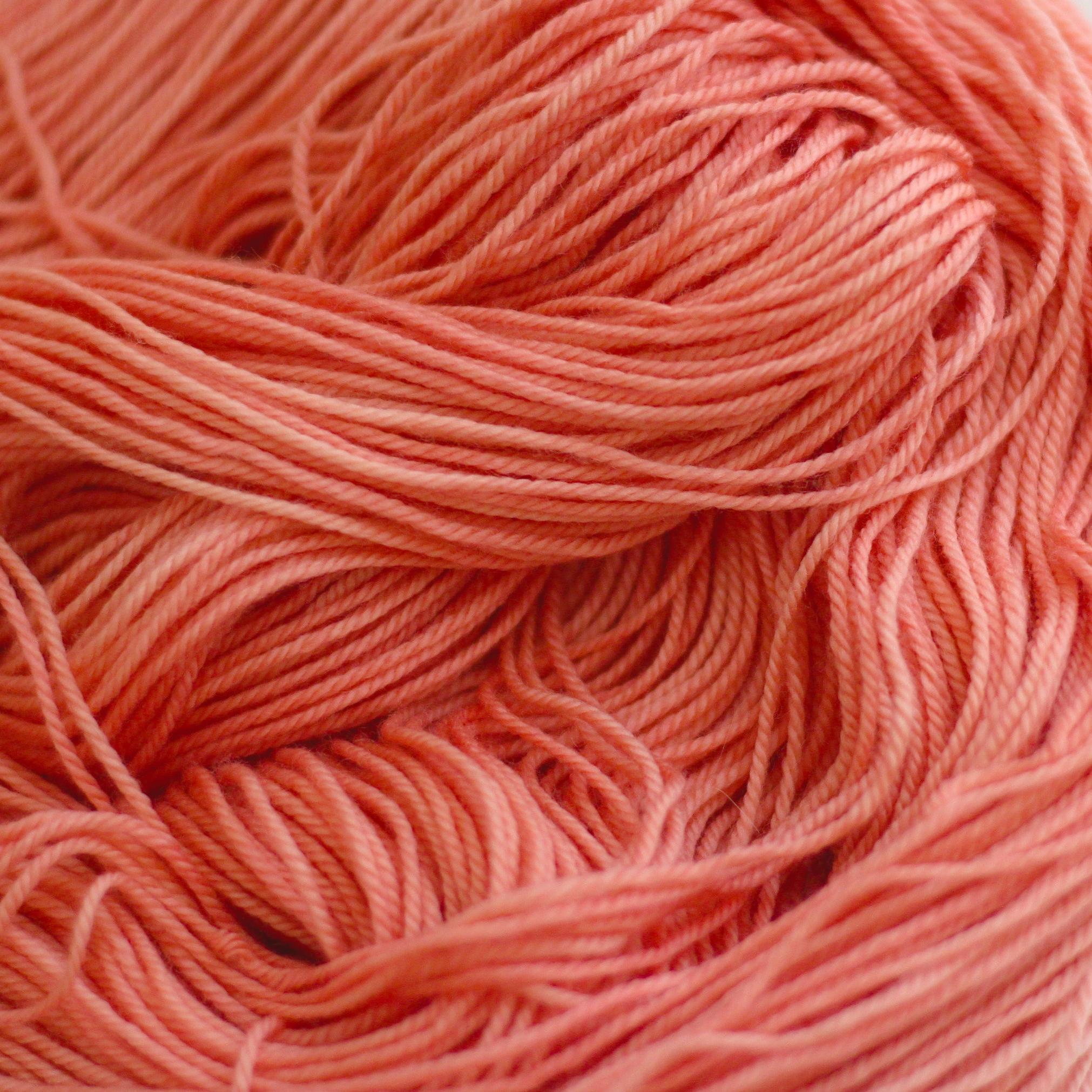 SHARON REDD     Madder   Rubia tinctorum