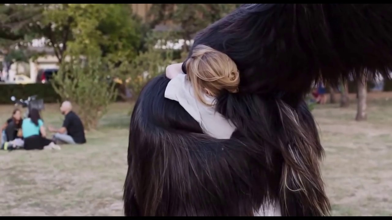 "Image is from Maren Ade's ""Toni Erdmann"" which is my absolute favorite of the year."