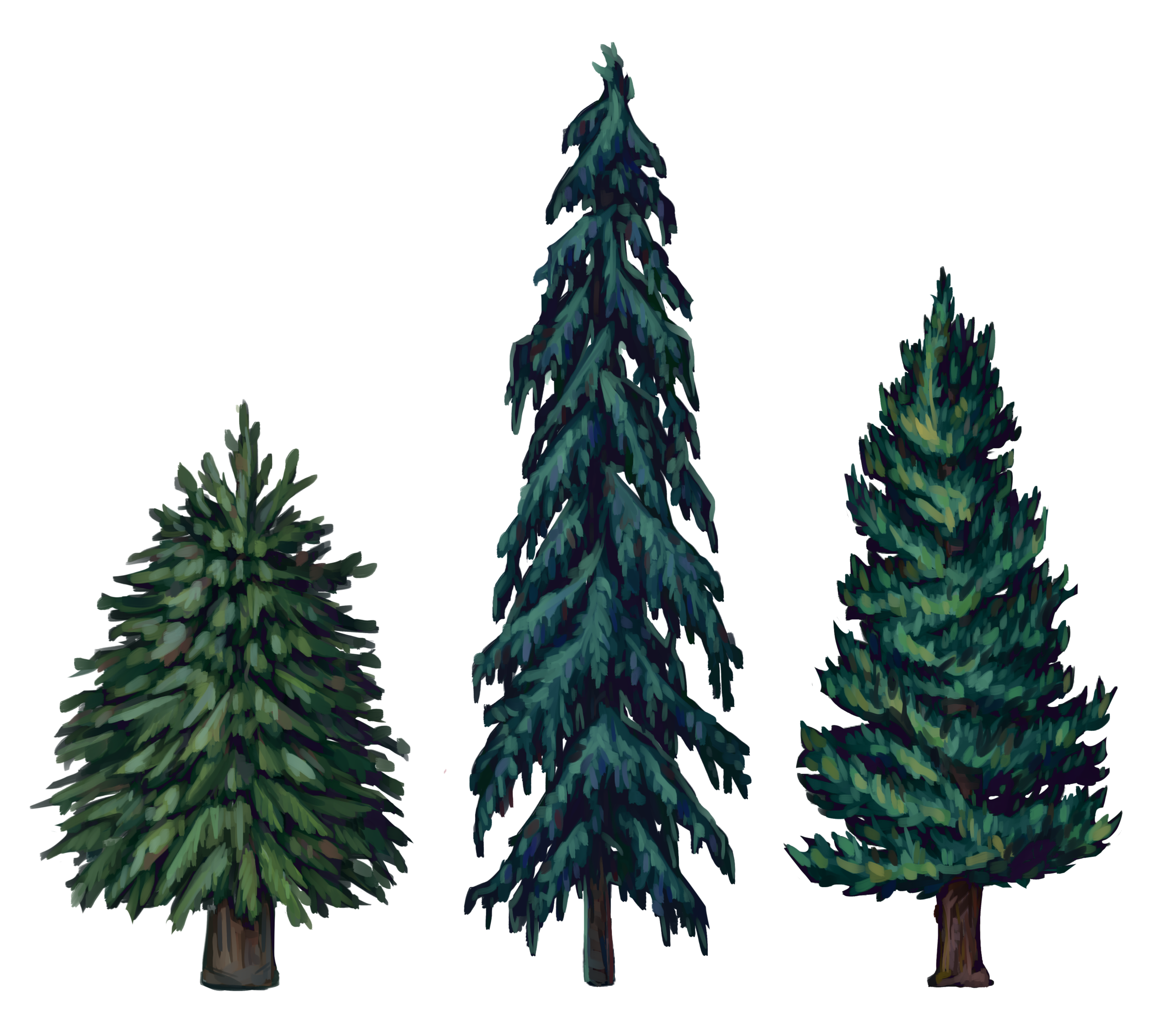 GermanySpruce2.png